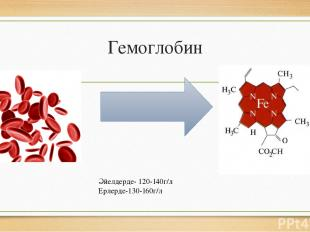 Гемоглобин Әйелдерде- 120-140г/л Ерлерде-130-160г/л