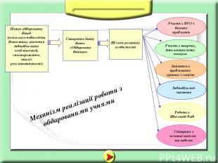 Співпраця з позашкільними закладами Індивідуальні заняття Механізм реалізації ро