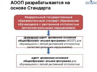 Федеральный государственный образовательный стандарт образования обучающихся с у