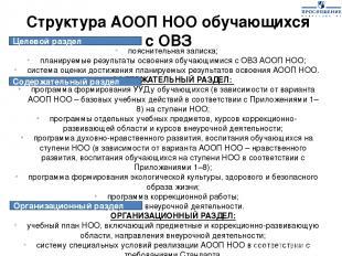 Структура АООП НОО обучающихся с ОВЗ пояснительная записка; планируемые результа