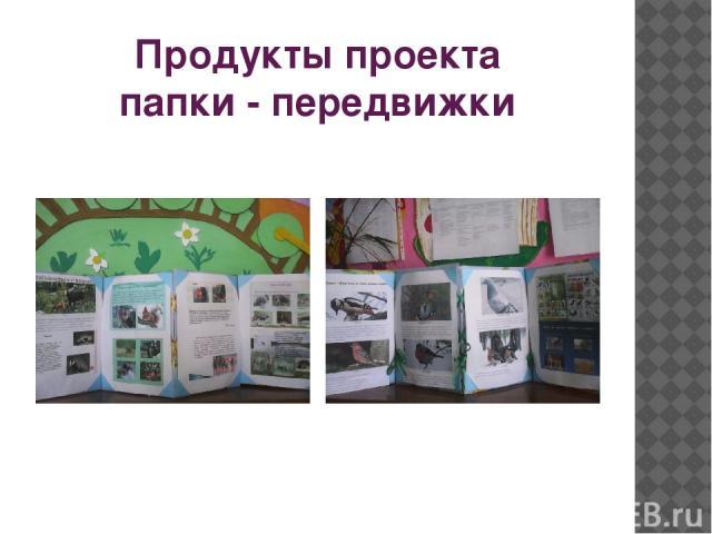 Продукты проекта папки - передвижки