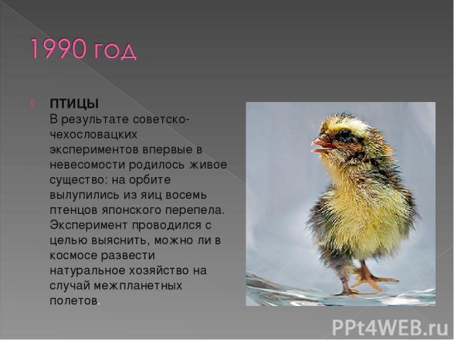 ПТИЦЫ В результате советско-чехословацких экспериментов впервые в невесомости родилось живое существо: на орбите вылупились из яиц восемь птенцов японского перепела. Эксперимент проводился с целью выяснить, можно ли в космосе развести натуральное хо…