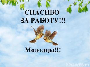 СПАСИБО ЗА РАБОТУ!!! Молодцы!!!