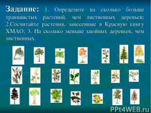 Задание: 1. Определите на сколько больше травянистых растений, чем лиственных де