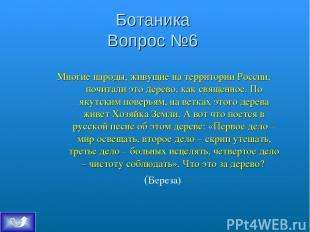 Ботаника Вопрос №6 Многие народы, живущие на территории России, почитали это дер