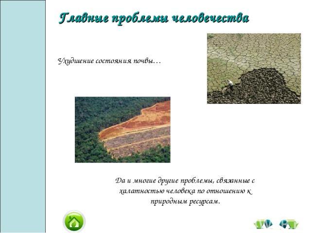 Да и многие другие проблемы, связанные с халатностью человека по отношению к природным ресурсам. Ухудшение состояния почвы… Главные проблемы человечества