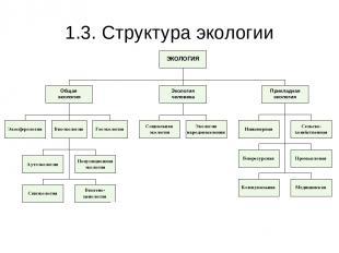 1.3. Структура экологии