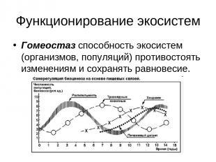 Функционирование экосистем Гомеостаз способность экосистем (организмов, популяци