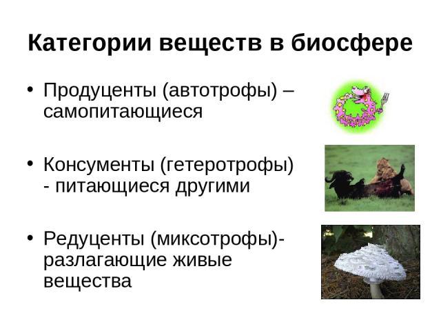 Категории веществ в биосфере Продуценты (автотрофы) – самопитающиеся Консументы (гетеротрофы) - питающиеся другими Редуценты (миксотрофы)- разлагающие живые вещества