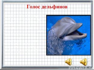 Голос дельфинов Дельфинымогут издавать около десяти различных звуков. Звуки, ко