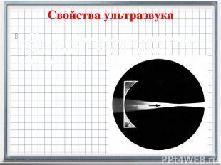 Свойства ультразвука 1. Ультразвуковые волны могут образовывать строго направ-ле