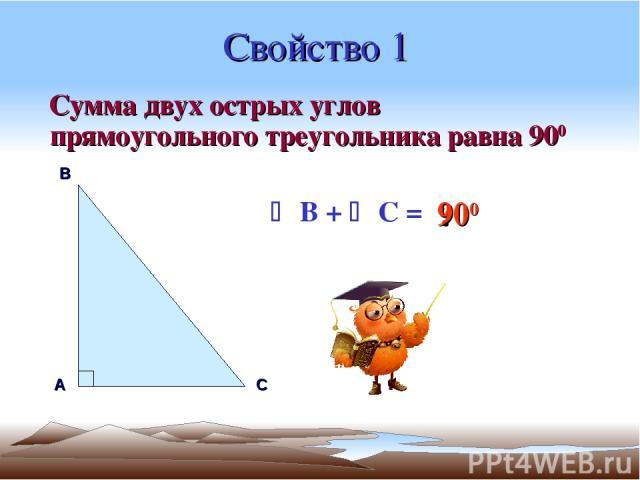 Свойство 1 Сумма двух острых углов прямоугольного треугольника равна 900 А В С B + C = ? 900