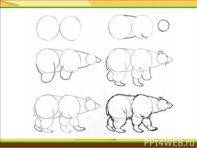 Как нарисовать карандашом белый