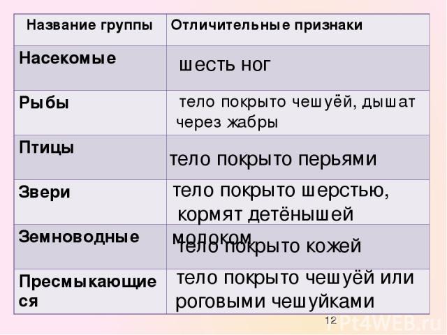 презентация на тему какие бывают животные 2 класс школа россии