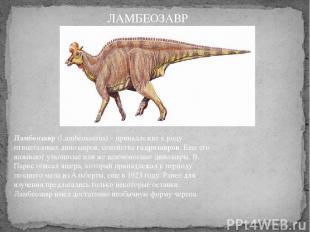 Ламбеозавр(Lambeosaurus) – принадлежит к роду птицетазовых динозавров, семейств