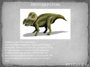 Одним из известных динозавров считаетсяПротоцератопс. Ящер с небольшими размера