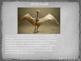 Первый летающий динозавр, или по-другомуПтерозавр (pterosaur), появился на наше