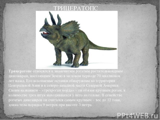 Трицератопсотносился к знаменитым рогатым растительноядным динозаврам, населявшим Землю в меловом периоде 70 миллионов лет назад. Его ископаемые останки обнаружены на территории Центральной Азии и в северо-западной части Северной Америки. Своим на…