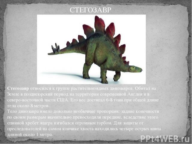 Стегозавротносился к группе растительноядных динозавров. Обитал на Земле в позднеюрский период на территории современной Англии и в северо-восточной части США. Его вес достигал 6-8 тонн при общей длине тела около 8 метров. Тело динозавра имело дов…