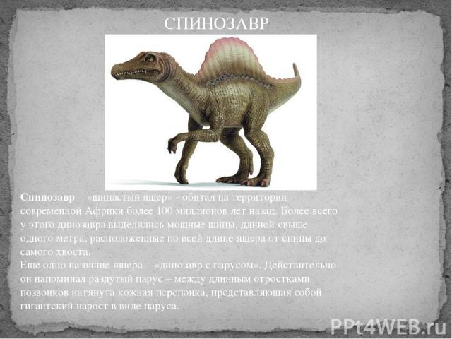 Спинозавр– «шипастый ящер» - обитал на территории современной Африки более 100 миллионов лет назад. Более всего у этого динозавра выделялись мощные шипы, длиной свыше одного метра, расположенные по всей длине ящера от спины до самого хвоста. Еще о…