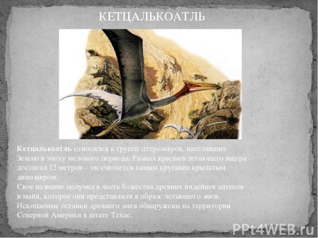 Кетцалькоатльотносился к группе птерозавров, населявших Землю в эпоху мелового периода. Размах крыльев летающего ящера достигал 12 метров – он считается самым крупным крылатым динозавром. Свое название получил в честь божества древних индейцев ацт…