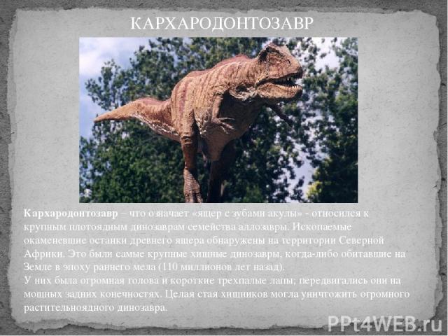 Кархародонтозавр– что означает «ящер с зубами акулы» - относился к крупным плотоядным динозаврам семейства аллозавры. Ископаемые окаменевшие останки древнего ящера обнаружены на территории Северной Африки. Это были самые крупные хищные динозавры, к…