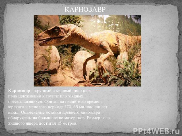 Карнозавр– крупный и хищный динозавр, принадлежавший к группе плотоядных пресмыкающихся. Обитал на планете во времена юрского и мелового периода 170–65 миллионов лет назад. Окаменелые останки древнего динозавра обнаружены на большинстве материков. …