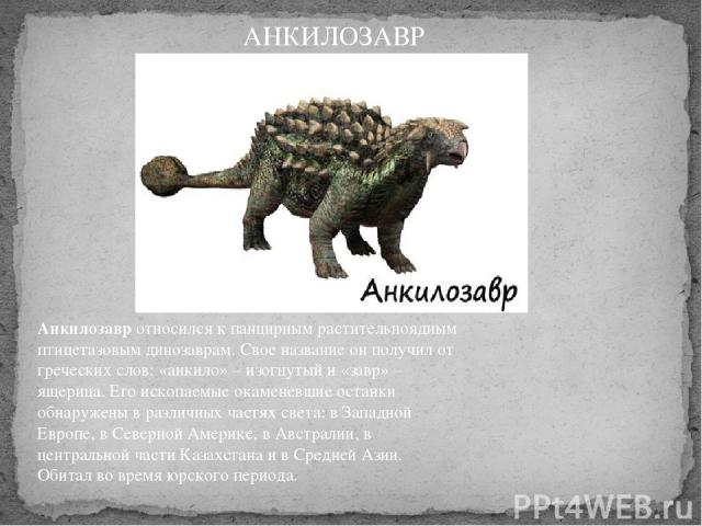 Анкилозавротносился к панцирным растительноядным птицетазовым динозаврам. Свое название он получил от греческих слов: «анкило» – изогнутый и «завр» – ящерица. Его ископаемые окаменевшие останки обнаружены в различных частях света: в Западной Европе…