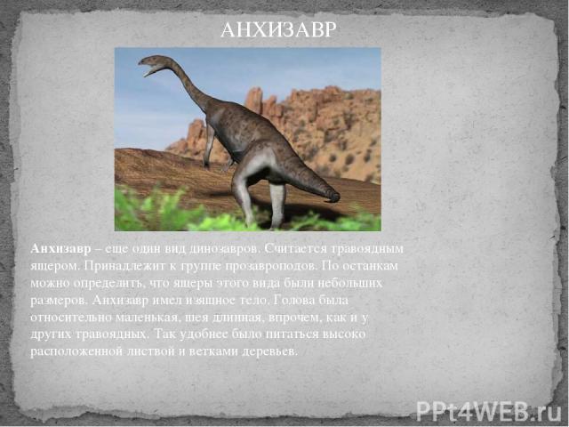 Анхизавр– еще один вид динозавров. Считается травоядным ящером. Принадлежит к группе прозавроподов. По останкам можно определить, что ящеры этого вида были небольших размеров. Анхизавр имел изящное тело. Голова была относительно маленькая, шея длин…
