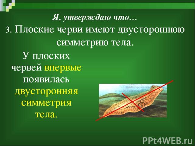 Презентацию по теме плоские червяки