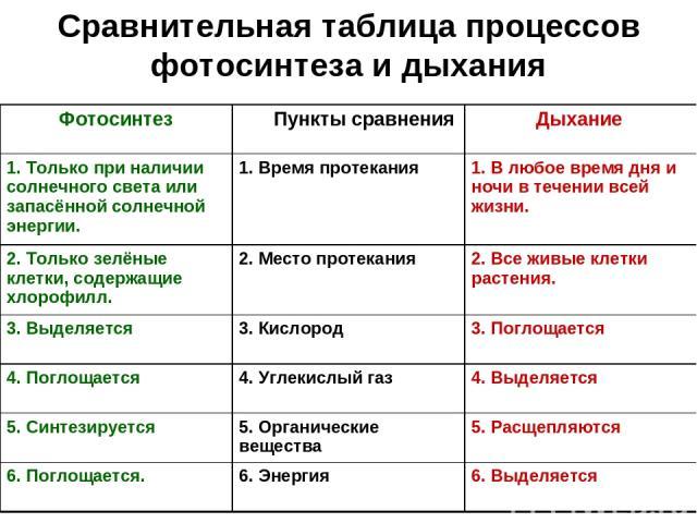 сравнительная таблица традиционного и индустриального общества