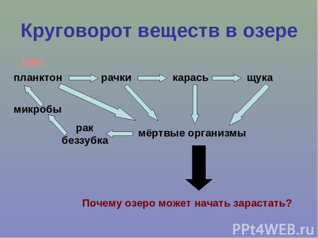 download делопроизводство методические указания по изучению курса 2003
