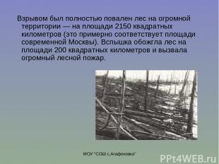 """МОУ """"СОШ с.Агафоновка"""" Взрывом был полностью повален лес на огромной территории"""
