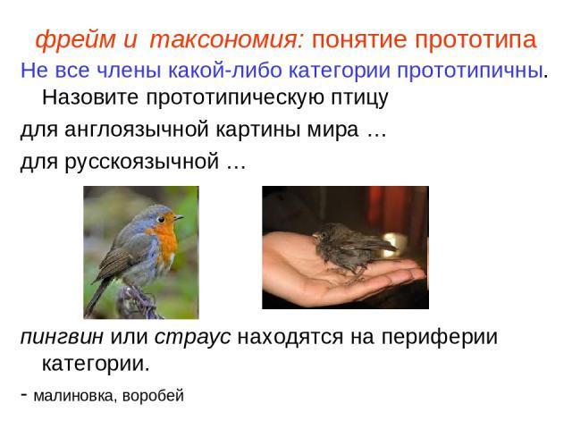 фрейм и таксономия: понятие прототипа Не все члены какой-либо категории прототипичны. Назовите прототипическую птицу для англоязычной картины мира … для русскоязычной … пингвин или страус находятся напериферии категории. - малиновка, воробей