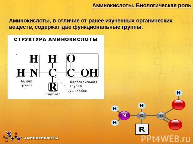 Формулы аминокислот по биологии