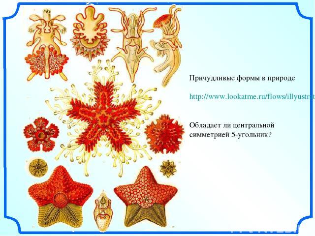 Причудливые формы в природе http://www.lookatme.ru/flows/illyustratsiya/posts/36694-ernst-haeckel Обладает ли центральной симметрией 5-угольник?