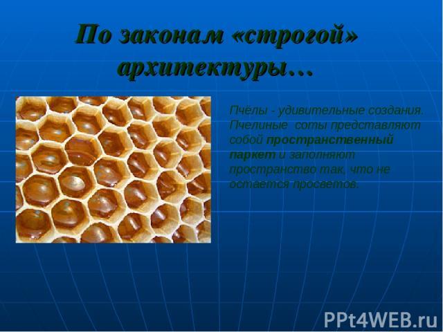 По законам «строгой» архитектуры… Пчёлы - удивительные создания. Пчелиные соты представляют собой пространственный паркет и заполняют пространство так, что не остается просветов.