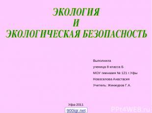 Выполнила ученица 8 класса Б МОУ гимназия № 121 г.Уфы Новоселова Анастасия Учите