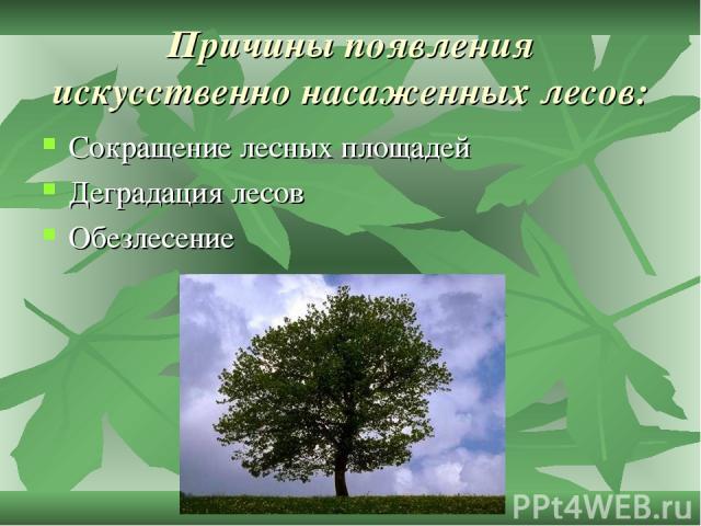 Причины появления искусственно насаженных лесов: Сокращение лесных площадей Деградация лесов Обезлесение