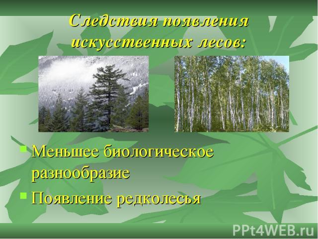 Следствия появления искусственных лесов: Меньшее биологическое разнообразие Появление редколесья