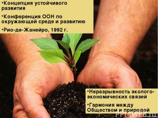 Концепция устойчивого развития Конференция ООН по окружающей среде и развитию Ри