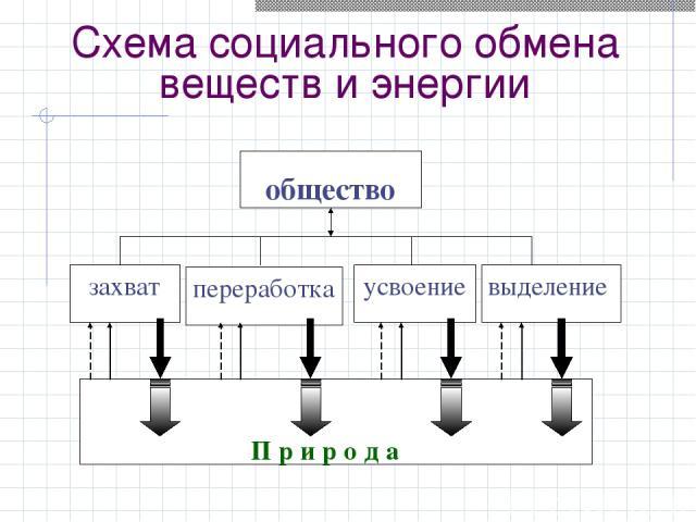 Схема социального обмена веществ и энергии