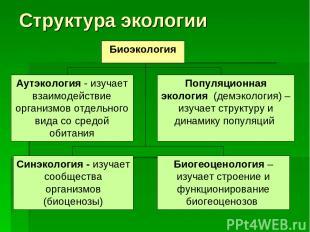 Структура экологии Биоэкология Аутэкология - изучает взаимодействие организмов о