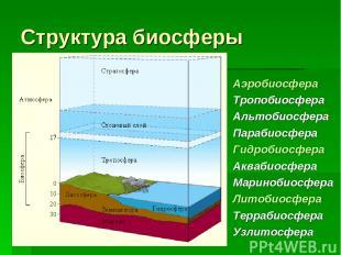 Структура биосферы Аэробиосфера Тропобиосфера Альтобиосфера Парабиосфера Гидроби