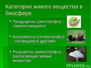 Категории живого вещества в биосфере Продуценты (автотрофы) – самопитающиеся Кон