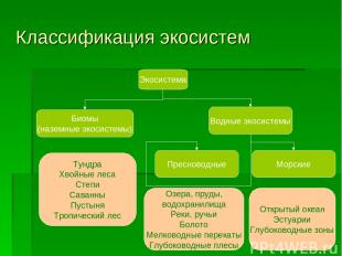 Классификация экосистем Экосистема Биомы (наземные экосистемы) Водные экосистемы