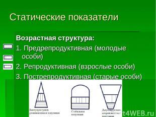 Статические показатели Возрастная структура: 1. Предрепродуктивная (молодые особ
