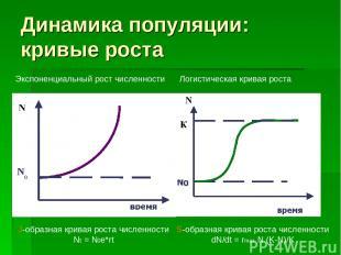 Динамика популяции: кривые роста J-образная кривая роста численности Nt = N0e*rt
