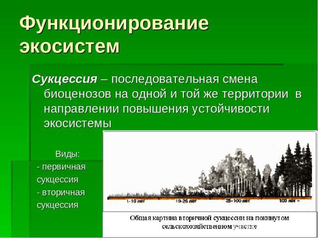 Функционирование экосистем Сукцессия – последовательная смена биоценозов на одной и той же территории в направлении повышения устойчивости экосистемы Виды: - первичная сукцессия - вторичная сукцессия