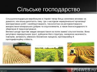 Сільське господарство Сільськогосподарське виробництво в Україні тепер більш нег